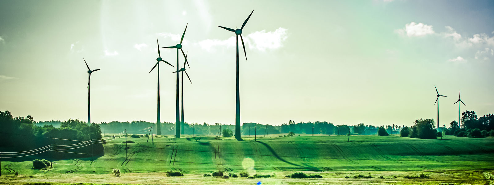 5 States That Are Leading America's Green Energy Initiative